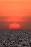 The sun sets over a remote beach on the west coast of Cape York in far northern Australia.