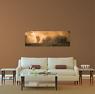 Room Display - Living Room<br /> 20 X 60 Canvas<br /> Limited Edition - Dusty Morning<br /> Amboseli National Park, Kenya<br /> ID# 2013 0128 5261<br /> <br /> template by www.arianafalerni.com
