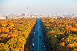 Berlin, Germany. 6 November, 2018. Spectacular late autumn colours of trees in Berlin's famous Tiergarten park in the centre of the city. The Brandenburg Gate and TV Tower are in the far distance.