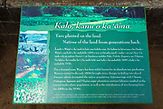 Interpretive sign at the Waipio Valley overlook, Hamakua Coast, The Big Island, Hawaii USA