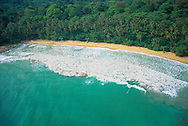 Cahuita, Caribbean Coast<br /> Costa Rica<br /> Code/C&oacute;digo #V0130<br /> &copy;Adrian Hepworth
