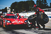 October 11-13, 2018: IMSA Weathertech Series, Petit Le Mans: 31 Whelen Engineering Racing, Cadillac DPi, Eric Curran, Felipe Nasr, Gabby Chaves