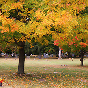 &quot;Colors Above&quot; <br />