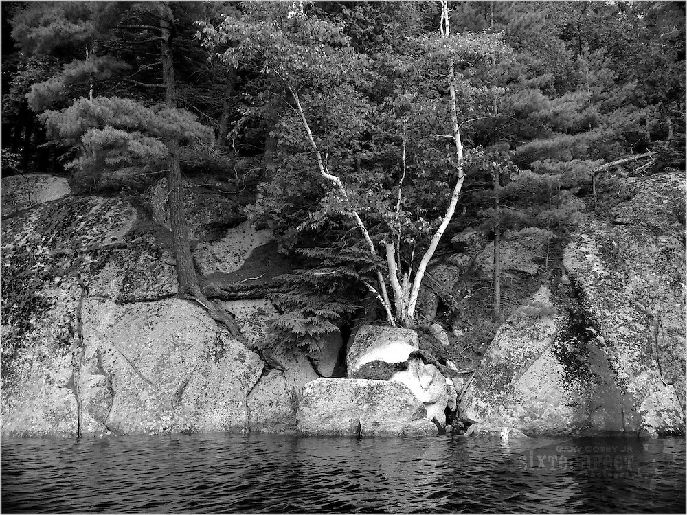 Gary Cosby Jr.  iPhone photographs  Rocks and trees on the shore of Tupper Lake, Adirondacks, New York.