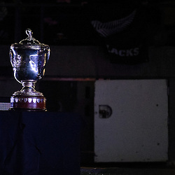 The Bledisloe Cup waits for the teams before the Investec Rugby Championship match between the New Zealand All Blacks and the Australia Wallabies at Westpac Stadium in Wellington, New Zealand on Saturday, 27 August 2016. Photo: Marco Keller / www.lintottphoto.co.nz