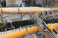 Packed bottles moving on conveyor belt