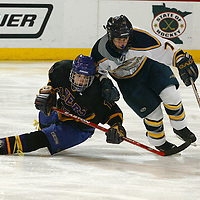 MN State Hockey 2006..Class A 3rd..Hermantown- Little Falls