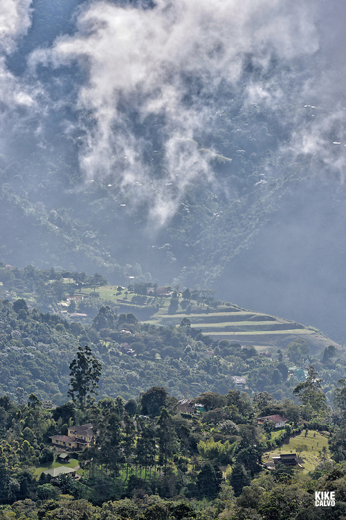 Fragmented cloud Forest site of San Antonio on the Western Andes of Colombia