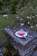 The aftermath debris of a plate and glass at dawn, the morning after a 50th birthday party, spread around the garden in the Herefordshire countryside, on 23rd June 2019, in Kington, Herefordshire, England.