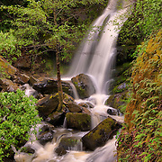 A picture of Devils Falls near Foresthill in the American River Canyon in California