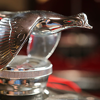 The radiator cap for a 1931 Ford Model A street rod that has a 320 cubic inch engine, automatic transmission, foose wheels, fully chromed and powdercoated undercarriage.