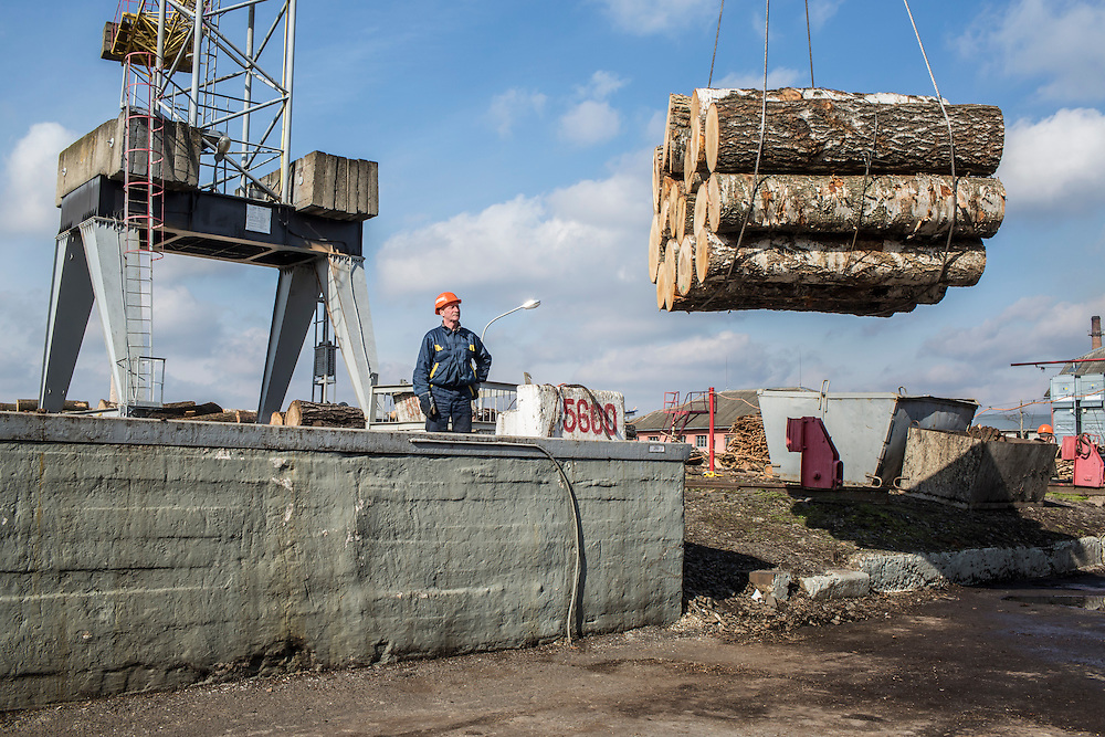 MUKACHEVO, UKRAINE - FEBRUARY 25, 2016: Workers at the Fischer-Mukachevo factory prepare logs that will be used in the production of skis and hockey sticks in Mukachevo, Ukraine. The plant fabricates many of the skis and hockey sticks for export. CREDIT: Brendan Hoffman for The New York Times