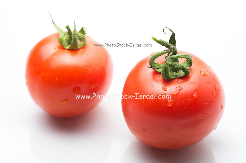 whole tomato on white Background
