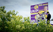 Posters go up for Nigel Farage near Manston Airport, 17th April 2015.