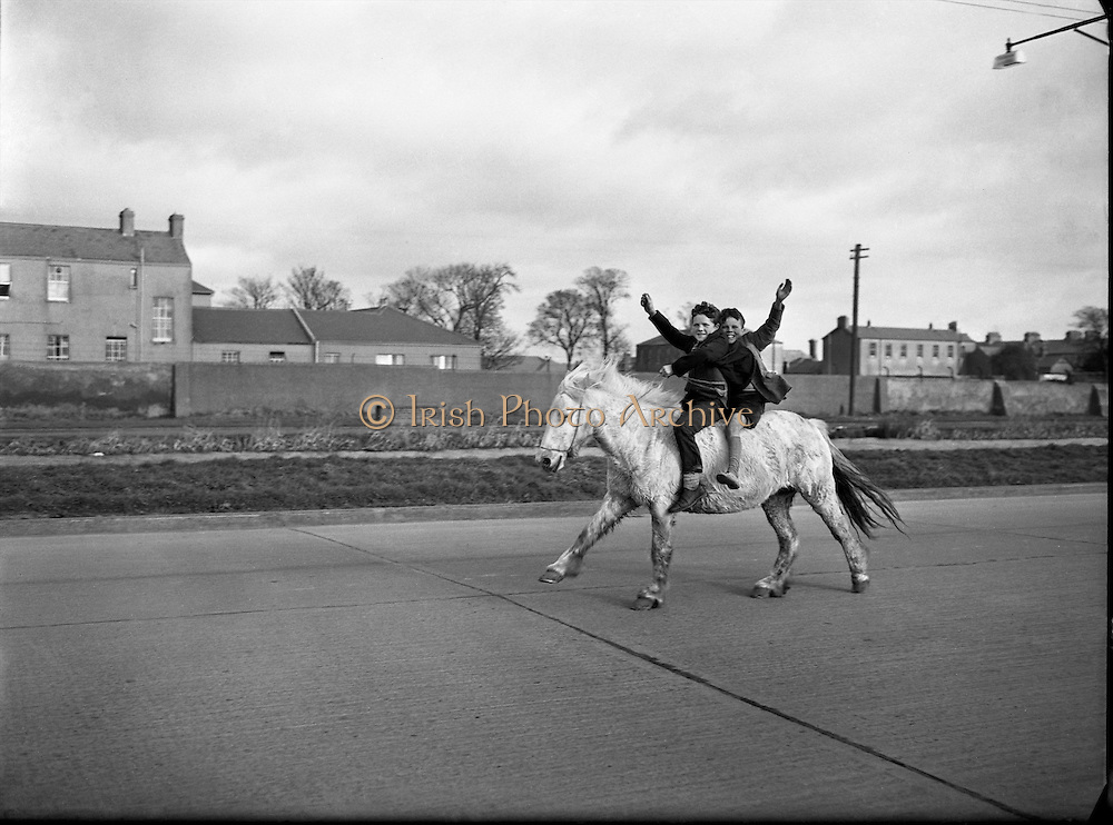 These aspiring cowboys and their steed enjoy the freedom of the roads..18.02.1961