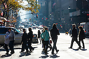Pedestrians crossing the road at zebra crossing along 5th Avenue in New York, USA