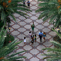 ST. PETERSBURG, FL -- June 29, 2008 -- Pedestrians make their way to and from the outdoor BayWalk entertainment complex in downtown St. Petersburg, Fla., on Sunday, June 29, 2008.  St. Petersburg's downtown is thriving with new shops, restaurants, and bars that are feeding off a younger, energetic crowd that fills its walkable map pinpointed with rejuvenated historic hotels and condos.