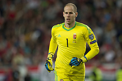 September 3, 2017 - Budapest, Hungary - Peter Gulacsi of Hungary pictured during the FIFA World Cup 2018 Qualifying Round match between Hungary and Portugal at Groupama Arena in Budapest, Hungary on September 3, 2017  (Credit Image: © Andrew Surma/NurPhoto via ZUMA Press)
