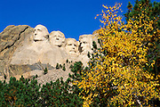 Mount Rushmore and fall color, Mount Rushmore National Memorial, South Dakota USA