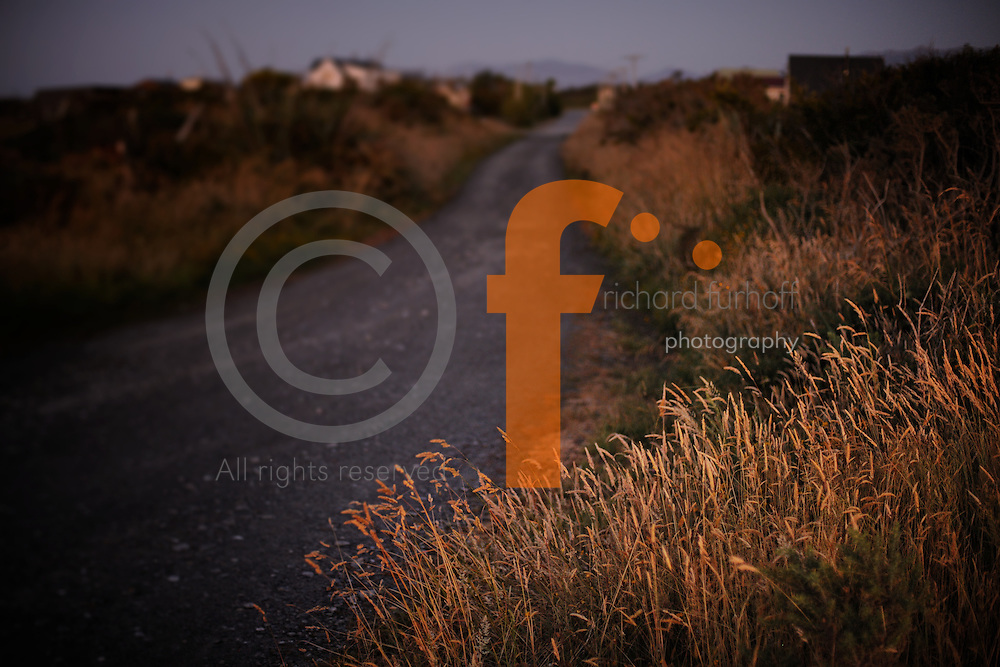 Richard Furhoff 120101_NewZealand_DSC5073.NEF
