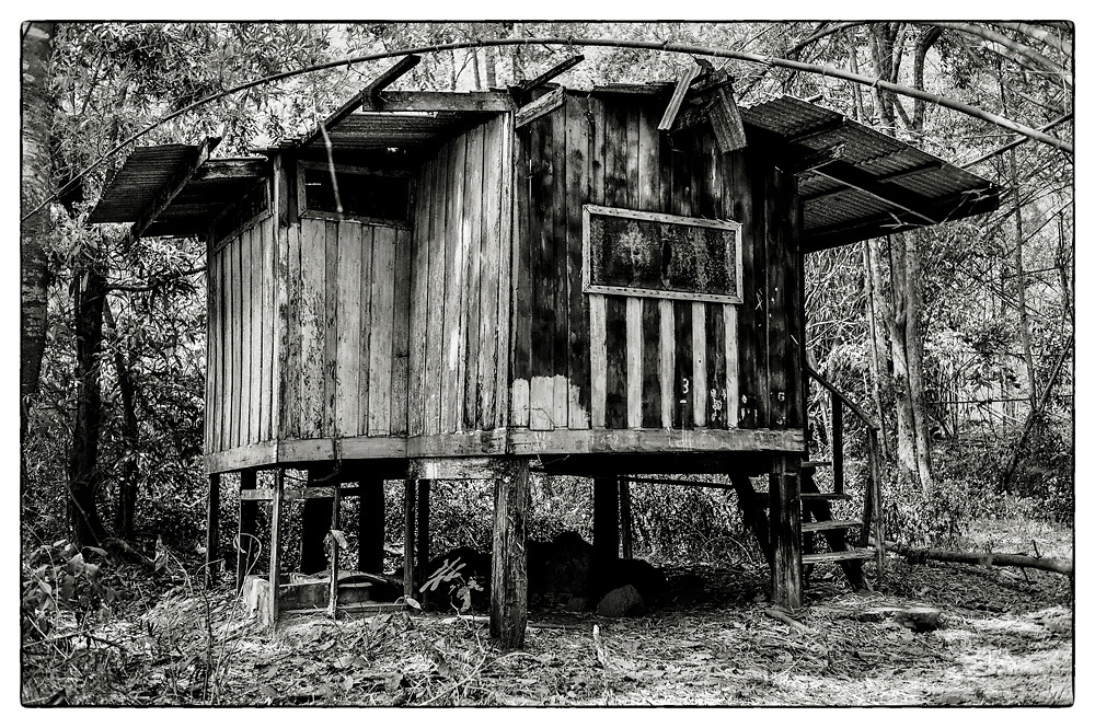 "An exterior view of an abandoned Monk's meditation hut set within a dense bamboo forest, in the grounds of the Pha Koeng Buddhist temple, Chaiyaphum Province, Northeast Thailand, 2014. From the series: ""Pha Koeng"" (2011-2017)."