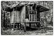 """An exterior view of an abandoned Monk's meditation hut set within a dense bamboo forest, in the grounds of the Pha Koeng Buddhist temple, Chaiyaphum Province, Northeast Thailand, 2014. From the series: """"Pha Koeng"""" (2011-2017)."""