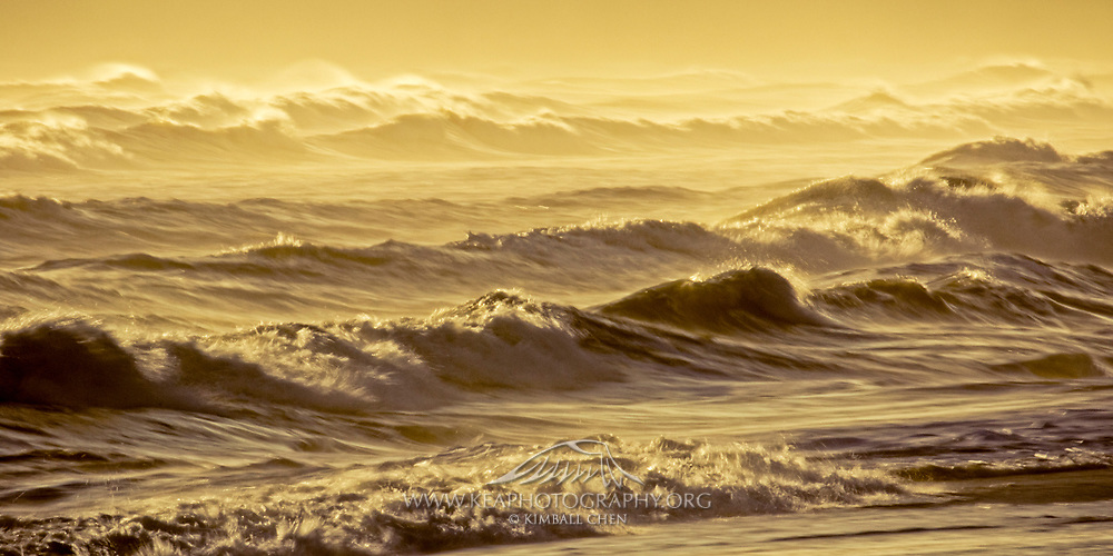 Golden waves roll across Gemstone Beach, along the Southern Scenic Route in Southland, South Island, New Zealand
