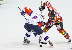 ZIGA JEGLIC of Slovenia vs Michael Schiechl of Austria during Friendly Ice-hockey match between National teams of Slovenia and Austria on April 19, 2013 in Ice Arena Tabor, Maribor, Slovenia. (Photo By Vid Ponikvar / Sportida)