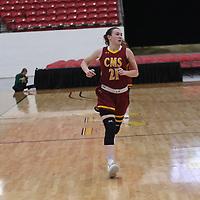 Women's Basketball: Claremont McKenna-Harvey Mudd-Scripps Colleges Stags vs. Saint Vincent College Bearcats