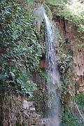 Israel, Judaea Desert, Ein Gedi, Nahal David, waterfall