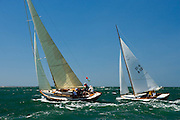 Kestrel and Owl racing at the Opera House Cup regatta.