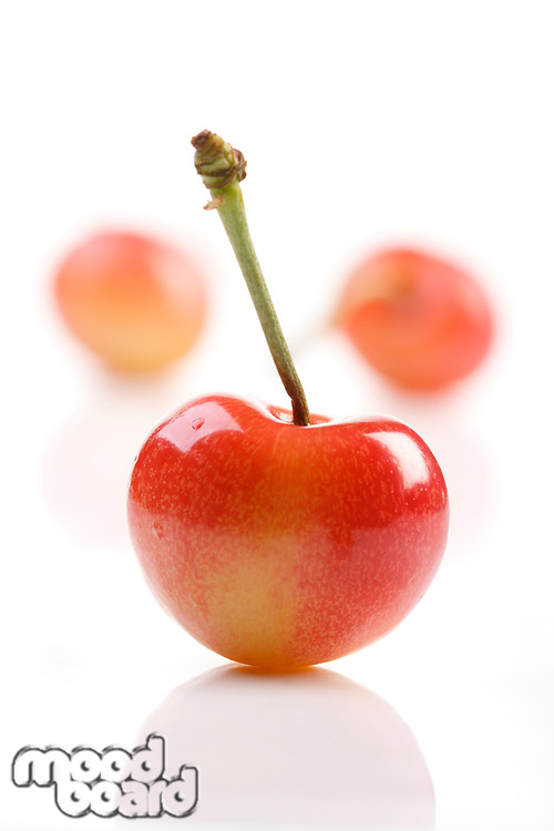 Close up of cherrys on white background