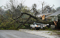A car is crashed by a huge tree after Hurricane Harvey struck Rockport, Texas August 26, 2017. REUTERS/Rick Wilking