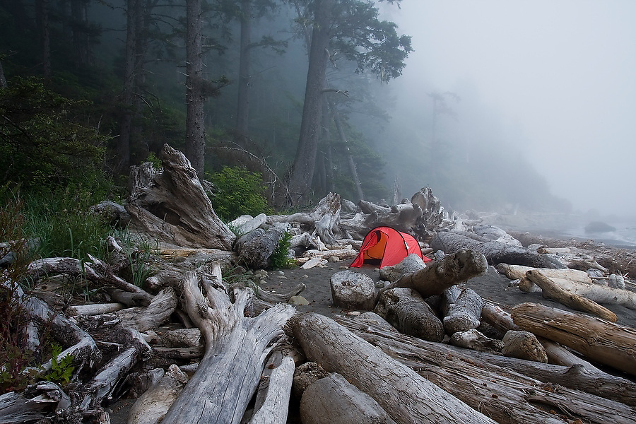 A red tent stands alone in the mist among large driftwood logs near Hole-in-the-Wall camp north of Rialto Beach, Olympic National Park, Washington.