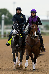 Derby 142 hopefuls were on the track for training, Tuesday, May 03, 2016 at Churchill Downs in Louisville.