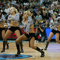 28 January 2009: New Orleans Hornets Honeybee cheerleaders perform during a 94-81 win by the New Orleans Hornets over the Denver Nuggets at the New Orleans Arena in New Orleans, LA. The Hornets wore special throwback uniforms of the former ABA franchise the New Orleans Buccaneers for the game as they honored the Bucs franchise as a part of the NBA's Hardwood Classics series. .