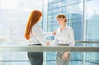 Businesswomen shaking hands in office