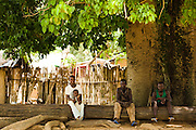 People sit under a large tree in Tano Akakro, Cote d'Ivoire on Saturday June 20, 2009.
