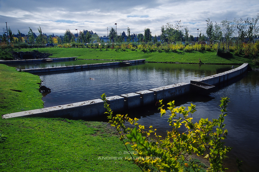 Stormwater management facility in Tualatin, Oregon, adjacent to the Kaiser Permanente Clinic at 19185 Southwest 90th Avenue.  The facility discharges to the wetlands of the Hedges Creek Marsh, a tributary of the Tualatin River.