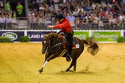 Bernard Fonck, (BEL), Sail On Top Wizard - Individual Final Comptetition - Alltech FEI World Equestrian Games™ 2014 - Normandy, France.<br /> © Hippo Foto Team - Leanjo De Koster<br /> 30-08-14