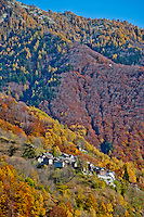 Steep mountainside village in a golden autumn forest in Valle Onsernone, Ticino, Southern Switzerland.