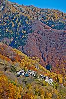 Steep mountainside village in a golden autumn forest in Valle Onsernone, Ticino, Southern Switzerland.