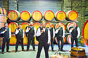 Groom and groomsmen in the winery in front of wine barrels with jackets off