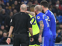 Football - 2018 / 2019 Premier League - Cardiff City vs. Huddersfield Town<br /> <br /> Aron Gunnarsson Cardiff City  indicates the linesman after shows the red card to awards a penalty against Cardiff , at the Cardiff City Stadium.<br /> <br /> COLORSPORT/WINSTON BYNORTH