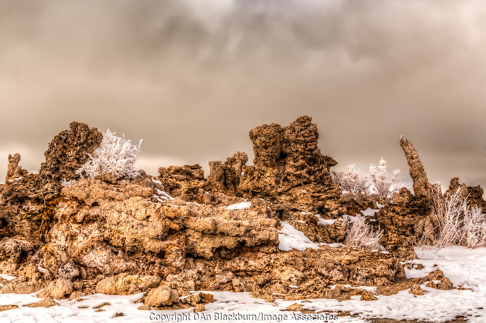 Ice Fog Shrouds Mono Lake and Snowy Tufa in Winter
