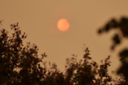 Nederland, Nijmegen, 17-10-2017Vandaag waren de hemel en de zon oranjegekleurd vanwege de rook van bosbranden in Portugal en Spanje, en saharazand wat door de orkaan Ophelia langs noordwest europa meegevoerd werd.Foto: Flip Franssen