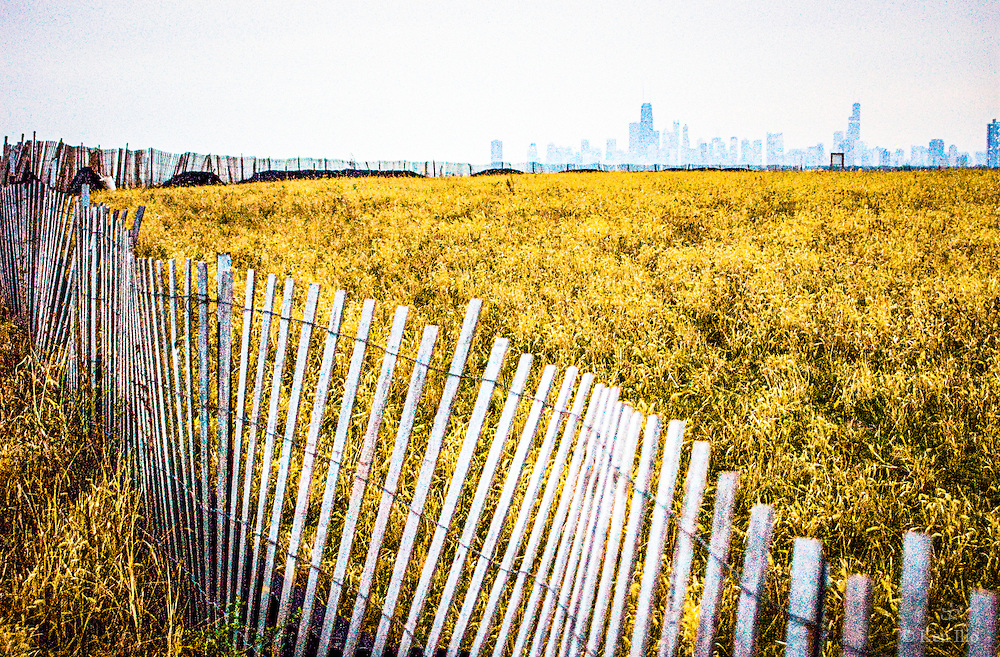 Fencing that separates the bird sanctuary from the  rest of Montrose Point that juts out into Lake Michigan