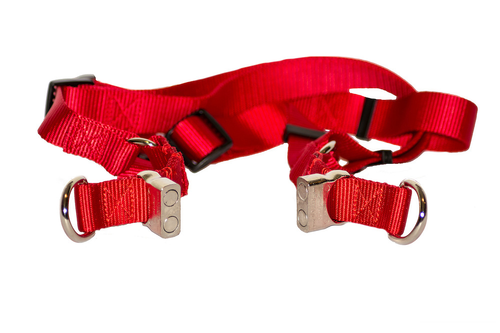 Straight Harness