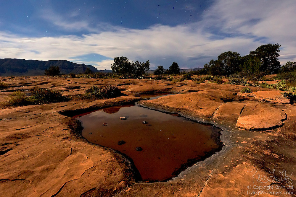 Rain water collects in several potholes in the hard, sandstone desert landscape at Tuweep, Arizona. This image was captured at night; the landscape was lit by the full moon.