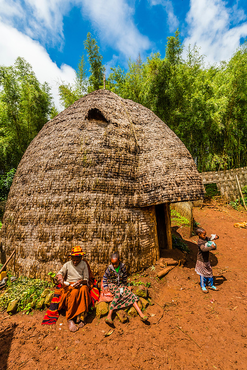 A Dorze village with characteristic beehive shaped huts, Southern Nations Nationalities and People's Region, Ethiopia.